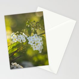 Springtime IV Stationery Cards