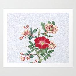 Floral bonanza Art Print