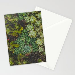 Botanical No. 4224 Stationery Cards