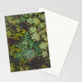 Botanical No. 4224 Stationery Cards