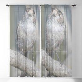 long tailed tit bird on tree Sheer Curtain