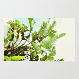 Banana Palms Rug