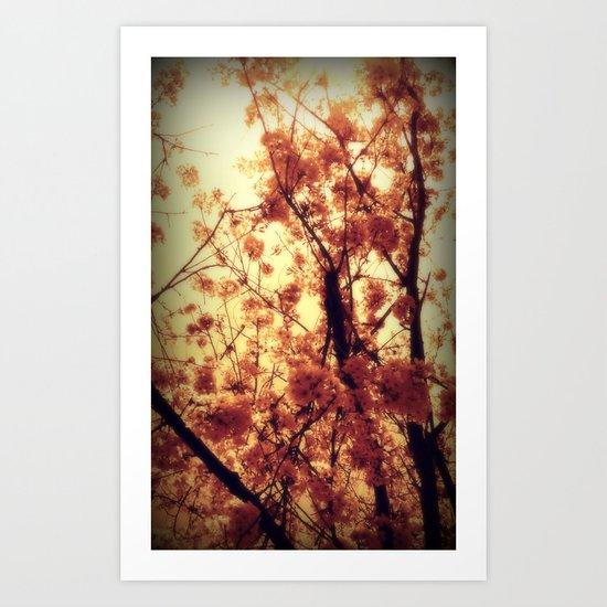 Burst Into Light Art Print