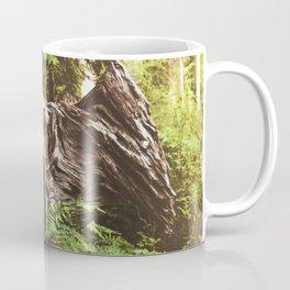 Hoh Rainforest Tree Coffee Mug