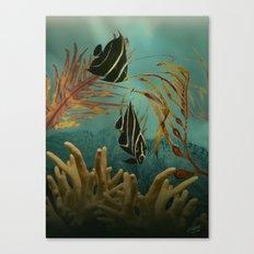 French Angelfish Canvas Print