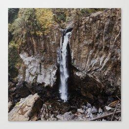 Drift Creek Falls Canvas Print