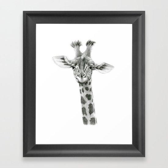 Young Giraffe  G2012-053 Framed Art Print