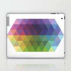 Fig. 016 Laptop & iPad Skin