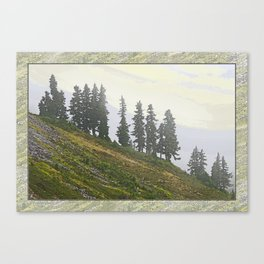 TIMBERLINE TREES Canvas Print