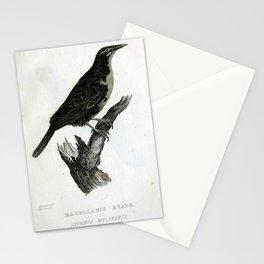 023 Magellanic Stare sturnus militaris Stationery Cards