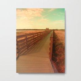 Summer Path Metal Print