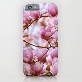 PRETTY PINK MAGNOLIAS IN THE LATE SPRING AFTERNOON SUNSHINE iPhone Case