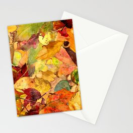 The Fall Forest Floor Stationery Cards