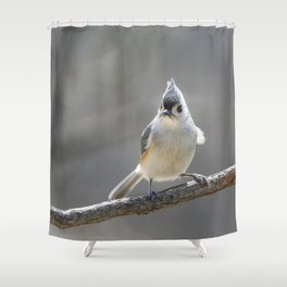 Titmouse Frown Shower Curtain