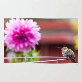Meal Planning For Hummingbirds Rug