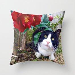 Orazio, the cat of camellias Throw Pillow