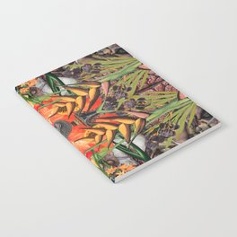 Concrescence Notebook