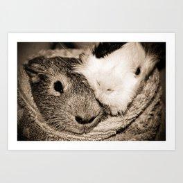 Guinea Pig Love Art Print