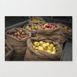 Cider Apples  Canvas Print