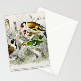Lesser Redpole, Goldfinch Male & Female, Siskin, Reed Bunting, and Golden Crested Wren from A histor Stationery Cards