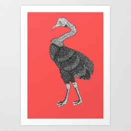 Greater Rhea Art Print