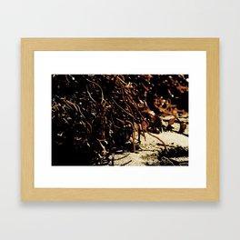 see weed Framed Art Print