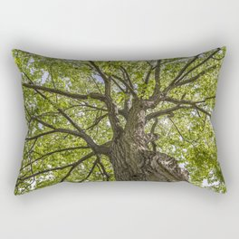 looking up into the tree crown Rectangular Pillow