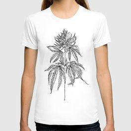 Cannabis Illustration T-shirt