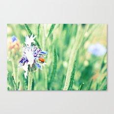 Spotless Canvas Print