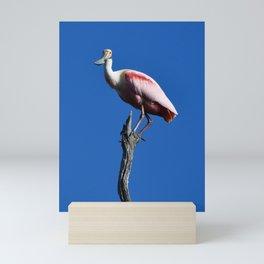 Spoonbill on a Branch Mini Art Print
