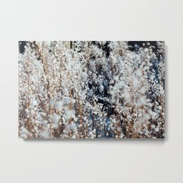 Snow Grass Metal Print