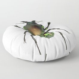 Rainbow Stag Beetle Floor Pillow
