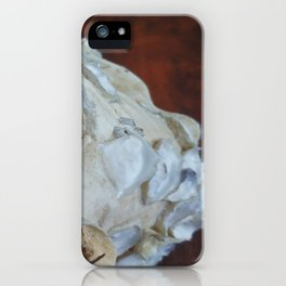 Ancienne conque 2 iPhone Case