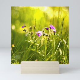 Beautiful meadow flowers - geranium on a sunny day - brilliant bright colors Mini Art Print