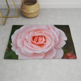 Pink rose beauty Rug