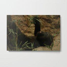 Little gorilla Metal Print