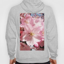 Pastel pink brown organic pretty flowers photography Hoody