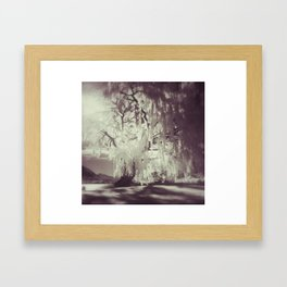 autumn in Wanaka Framed Art Print