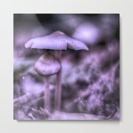 Magic Mushrooms Metal Print