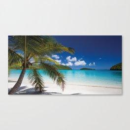 Tropical Shore Canvas Print