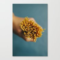 pasta Canvas Prints featuring Pasta by Laura Baay