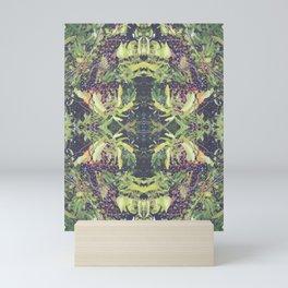 Elderberry - Sambucus canadensis Mini Art Print