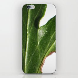Ivy leaf iPhone Skin