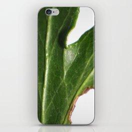 Ivy leaf iPhone Skin