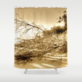 Erosion - Weathered Endless Beauty 5 Shower Curtain
