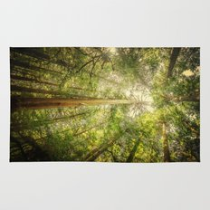 Forest Tree Tops Rug