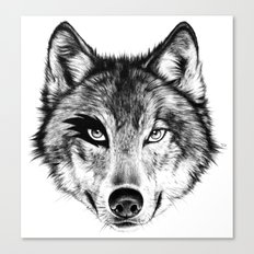 The Wolf Next Door Canvas Print