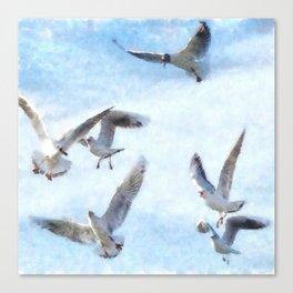 Gulls In Flight Watercolor Canvas Print