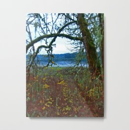 Fairest in the Land Metal Print