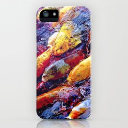 Koi Krazy iPhone Case